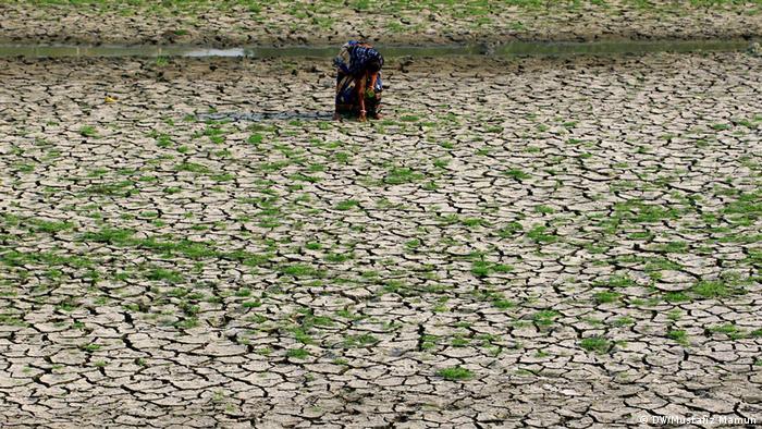 COP23 leva adiante trabalhos pelo Acordo de Paris