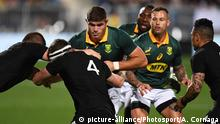 Rugby Neuseeland All Blacks v Südafrika Springboks