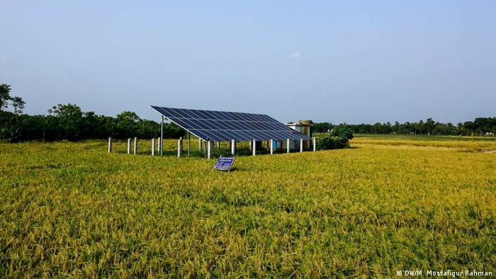 Bangladesch Erneuebare Energie (DW/M. Mostafigur Rahman)