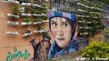 Wand und Wandpflanzen (DW/D. O'Donnell)