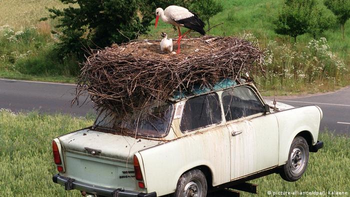 A Trabant car with stork nest on top