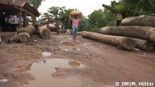 Klimawandel Bangladesch, Global Ideas