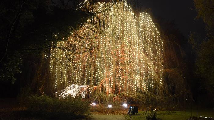 Christmas Garden Berlin 2016