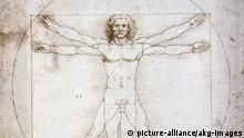 Leonardo da Vinci Proportionsstudie nach Vetruv
