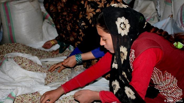 Afghanistan Arbeitsbedingungen für verwitwete Frauen (DW/S. Tanha)