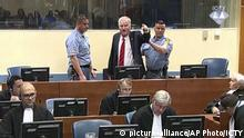 Niederlande Urteil Ratko Mladic | Mladic wird daraus geführt
