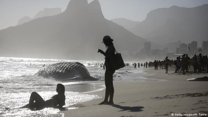 Sunbathers gather near a dead humpback whale washed up on famed Ipanema beach