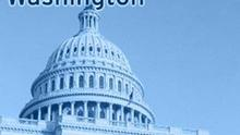 DW-Washington, Korrespondenz aus Washington, Logo, Grafik, Blickpunkt