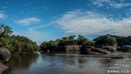 Landscape view of Tuparro National Park, located near the country's border with Venezuela (PNN/G. Pulido)