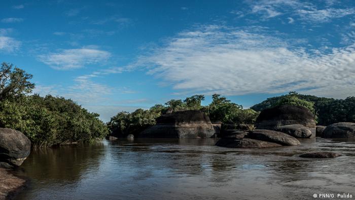 La Reserva de la Biosfera El Tuparro se caracteriza por una extensa sabana verde surcada por grandes ríos y playas doradas.