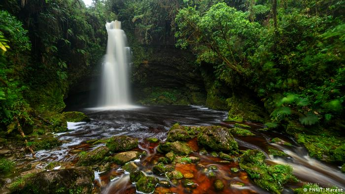 Un ejemplo para el uso turístico es el Parque Sierra Nevada del Cocuy en los Andes, también la Cueva de los Guácharos (foto), zona en la que se empezó a trabajar en ecoturismo con la comunidad local, una vez finalizado el conflicto con las FARC.
