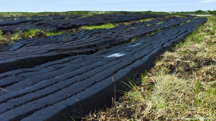 Turf lined up to dry on a bogland in Ireland