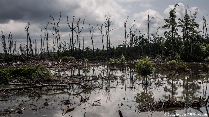 Nigeria Niger delta (Getty Images/AFP/S. Heunis)