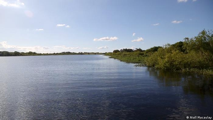USA Florida Everglades (Niall Macaulay)