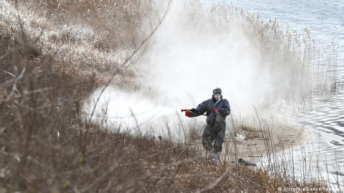 Bird flu disinfectant being sprayed in South Korea (picture-alliance/Yonhap/)