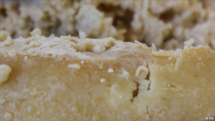 A piece of white-brownish cheese full of maggots (Screenshots aus Euromaxx Beitrag) - Madenkäse (DW)