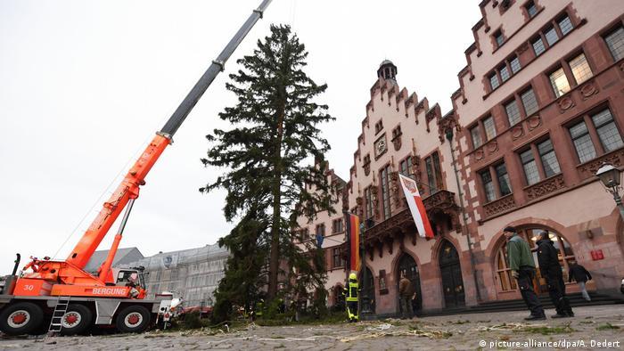 Ankunft Frankfurter Weihnachtsbaum