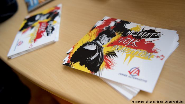 Deutschland Hannover AfD Parteitag (picture-alliance/dpa/J. Stratenschulte)