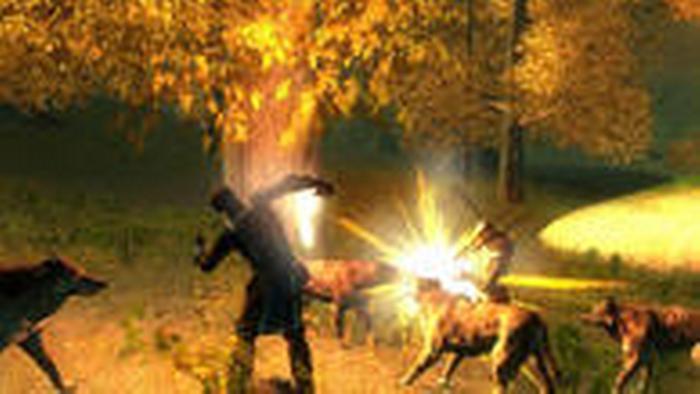 Screenshot aus dem Computerspiel Das Schwarze Auge - Drakensang