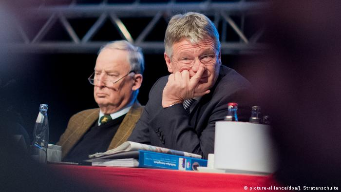 Hannover AfD Parteitag Meuthen Gauland (picture-alliance/dpa/J. Stratenschulte)