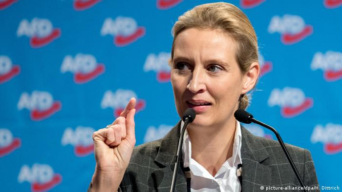 Hannover AfD Parteitag Weidel (picture-alliance/dpa/H. Dittrich)