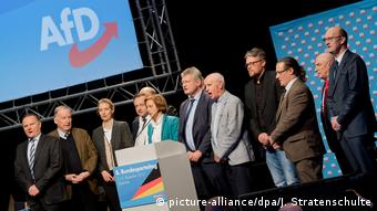 Hannover AfD Parteitag Nationalhymne (picture-alliance/dpa/J. Stratenschulte)
