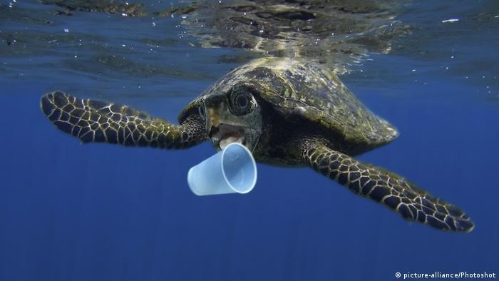 Global Ideas Plastikmüll in den Weltmeeren