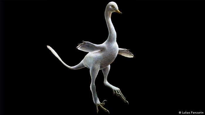 Zeitschrift Nature - Rekonstruktion Dinosaurier Halszkaraptor