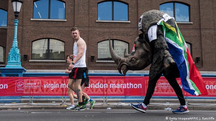 Sport kurios 2017 (Getty Images/AFP/C.J. Ratcliffe)