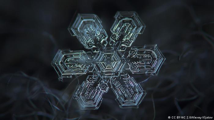 Snowflake radiates outward, shapped like a star