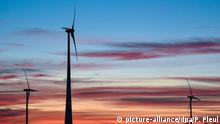 Stock photo of a wind farm in Germany (picture-alliance/dpa/P. Pleul)