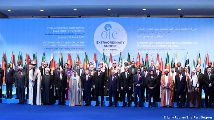 Участники ОИС в Стамбуле