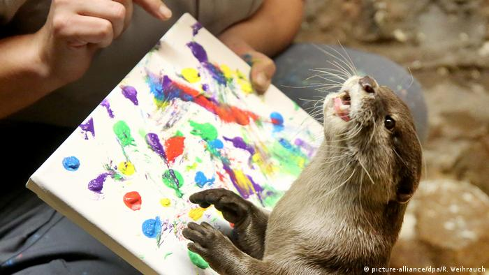 an Asian small-clawed otter playing with paint on a canvas (picture-alliance/dpa/R. Weihrauch)