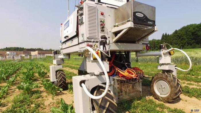 Cada vez mais pesquisadores desenvolvem robôs para ajudar na lavoura