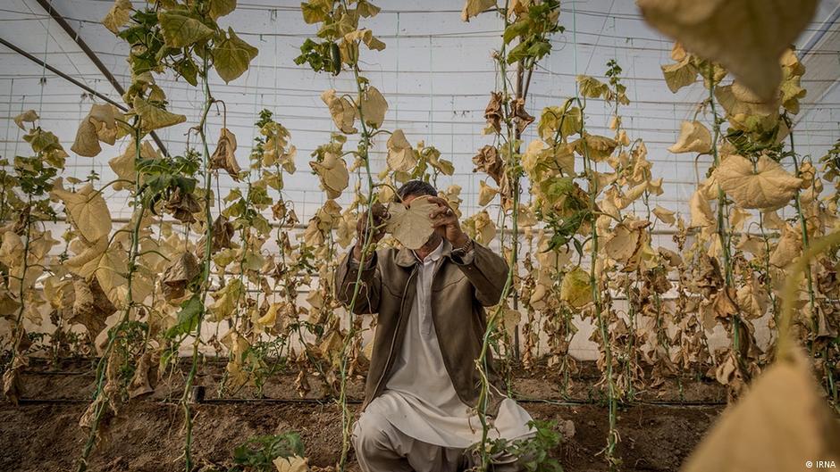 Iran Dürre in der Provinz Sistan