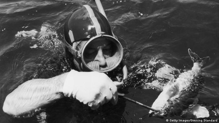 Harold Holt in the water with a fish
