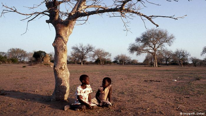 Children sitting under a withered tree in a landscape made arid by drought