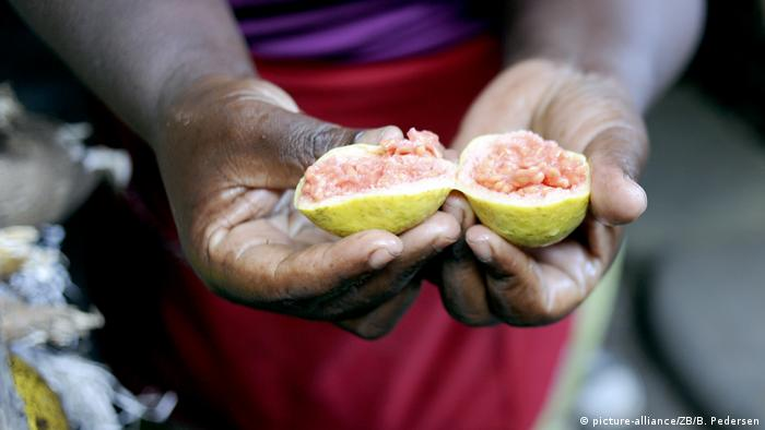 A close-up of a woman's hands holding a piece of open fruit.