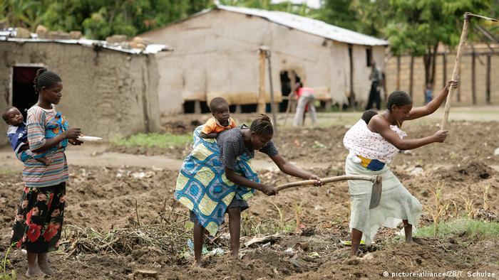 Angola Landwirtschaft Feldarbeit im Dorf Caiense (picture-alliance/ZB/T. Schulze)