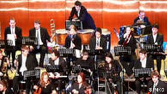 Das Kammerorchester bei einer Aufführung (Foto: Mitteleuropäisches Kammerorchester)