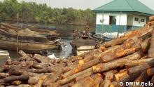 Nigeria, John Amadi hackt das Holz in kleine Stücke, damit es zu Holzkohle verarbeitet werden kann