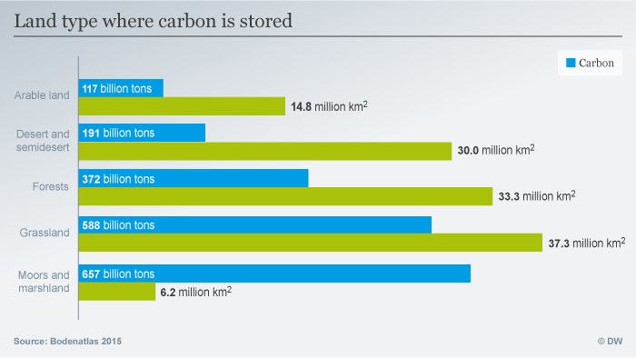 Infographic showing types of land where carbon is stored
