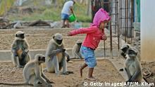 Indien kleines Kind befreundet sich mit Langur-Affen in Allapur