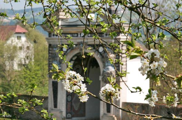 Schloss Neuburg 03
