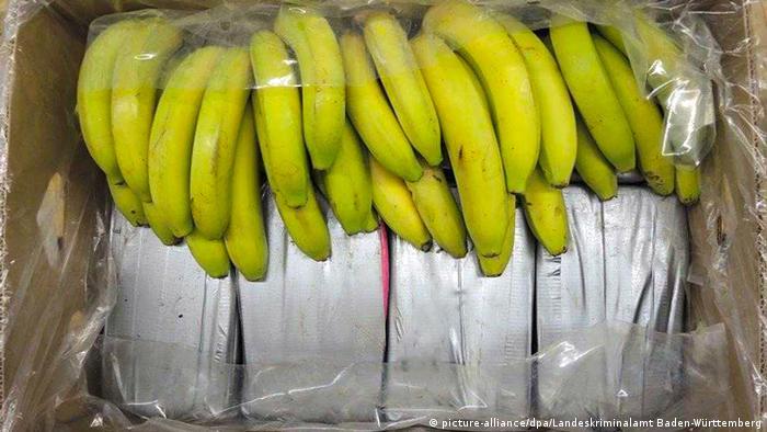 Carregamento de cocaína descoberto na Alemanha em caixas de banana vindas do Equador