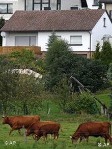In diesem Ferienhaus in Oberschledorn im Sauerland planten die Terroristen. (Foto: AP)