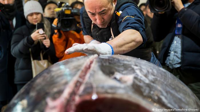 Japan Rote-Liste-Thunfisch für 270.000 € versteigert