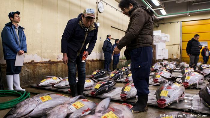 Customers examine tuna at Tsukiji fish market in Tokyo. (Getty Images/Tomohiro Ohsumi)