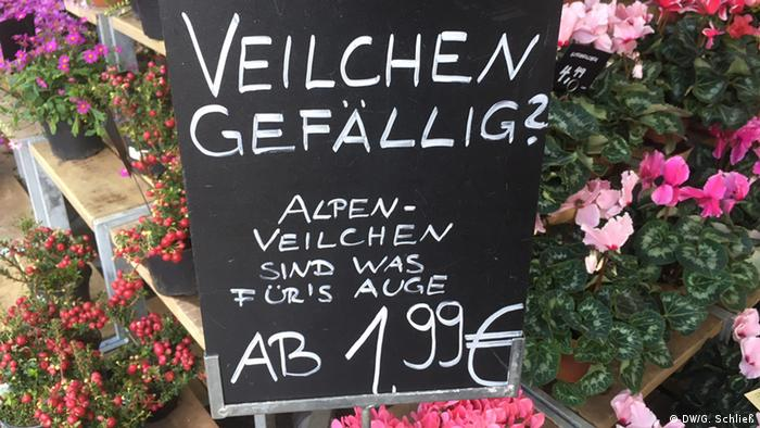 sign advertising violets (DW/G. Schließ)