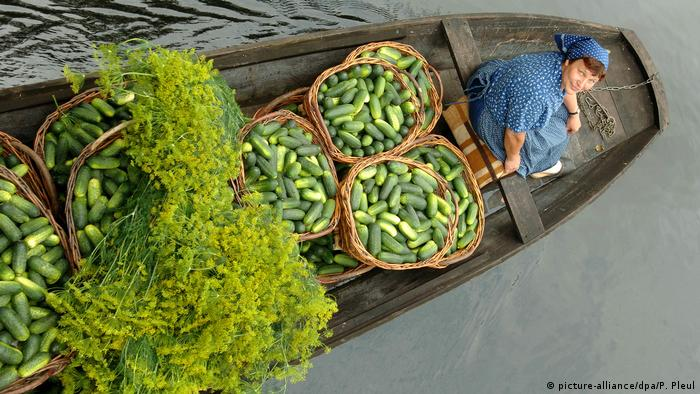 A German woman in a boat with cucumbers and dill in the Spreewald